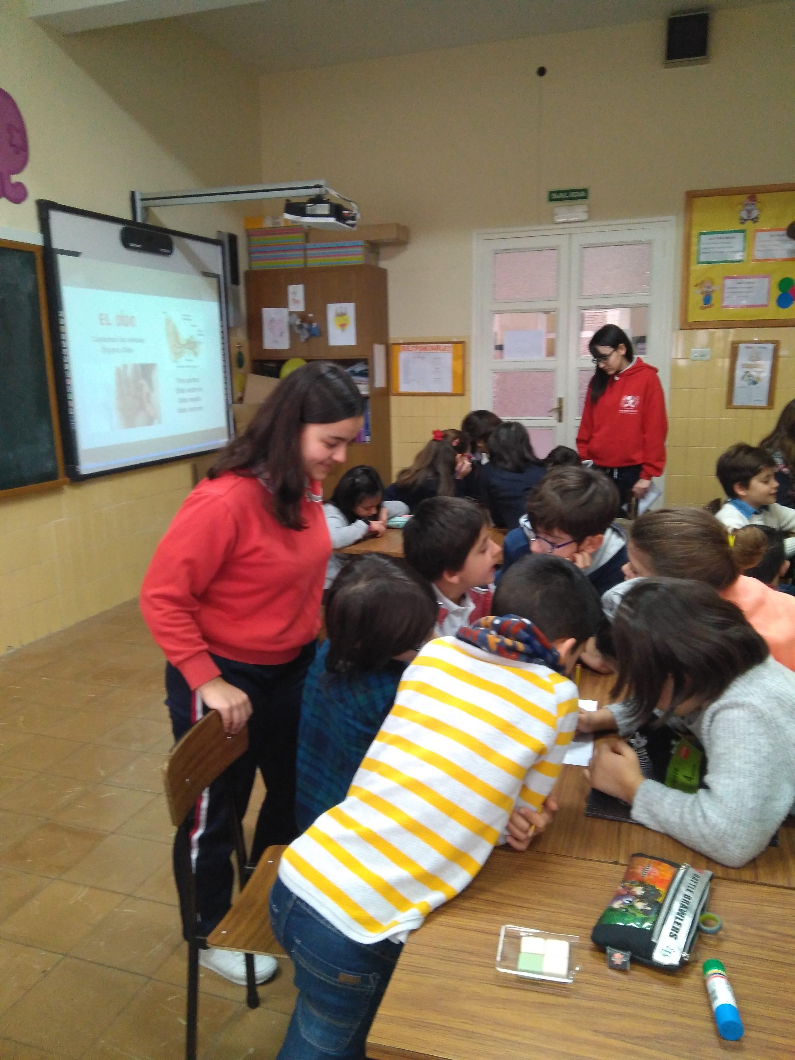 Aprender enseñando con los alumnos de 4º de educación primaria
