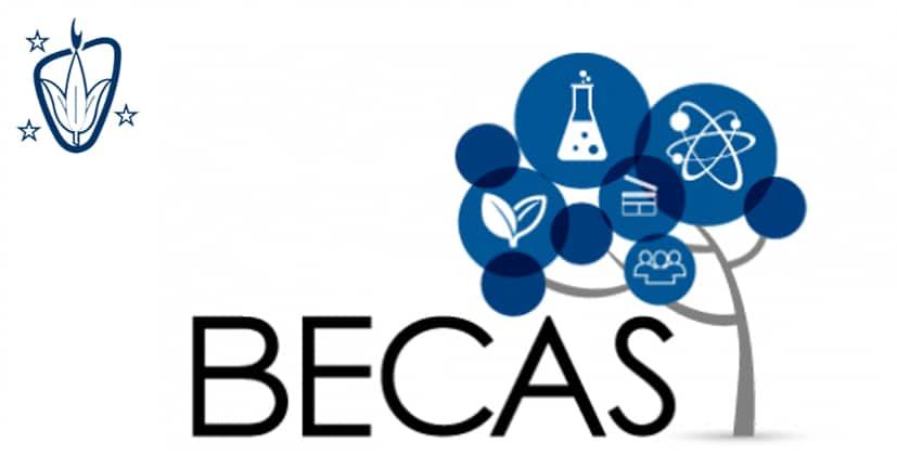 Becas estudios postobligatorios Colegio Blanca de Castilla