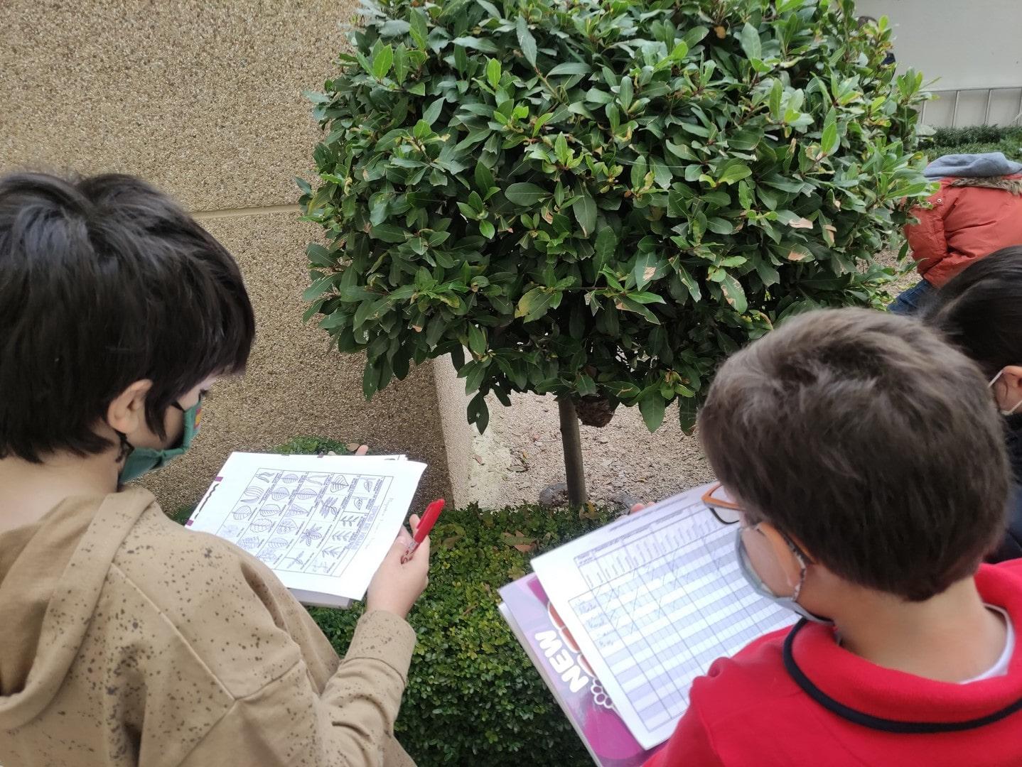 Los alumnos de 5º de Educación Primaria del Colegio Blanca de Castilla de Palencia visitan el jardín del colegio