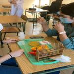 Determinación, comparación y cuantificación de vitamina C por los alumnos de bachillerato del Colegio Blanca de Castilla de Palencia