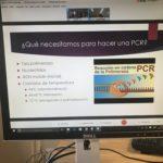 Videoconferencia sobre la PCR de los alumnos de bachillerato del Colegio Blanca de Castilla de Palencia