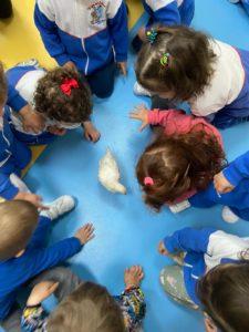 Los alumnos de la Ludoteca Pipo el Bueno del Colegio Filipense Blanca de Castilla de Palencia conocemos la granja